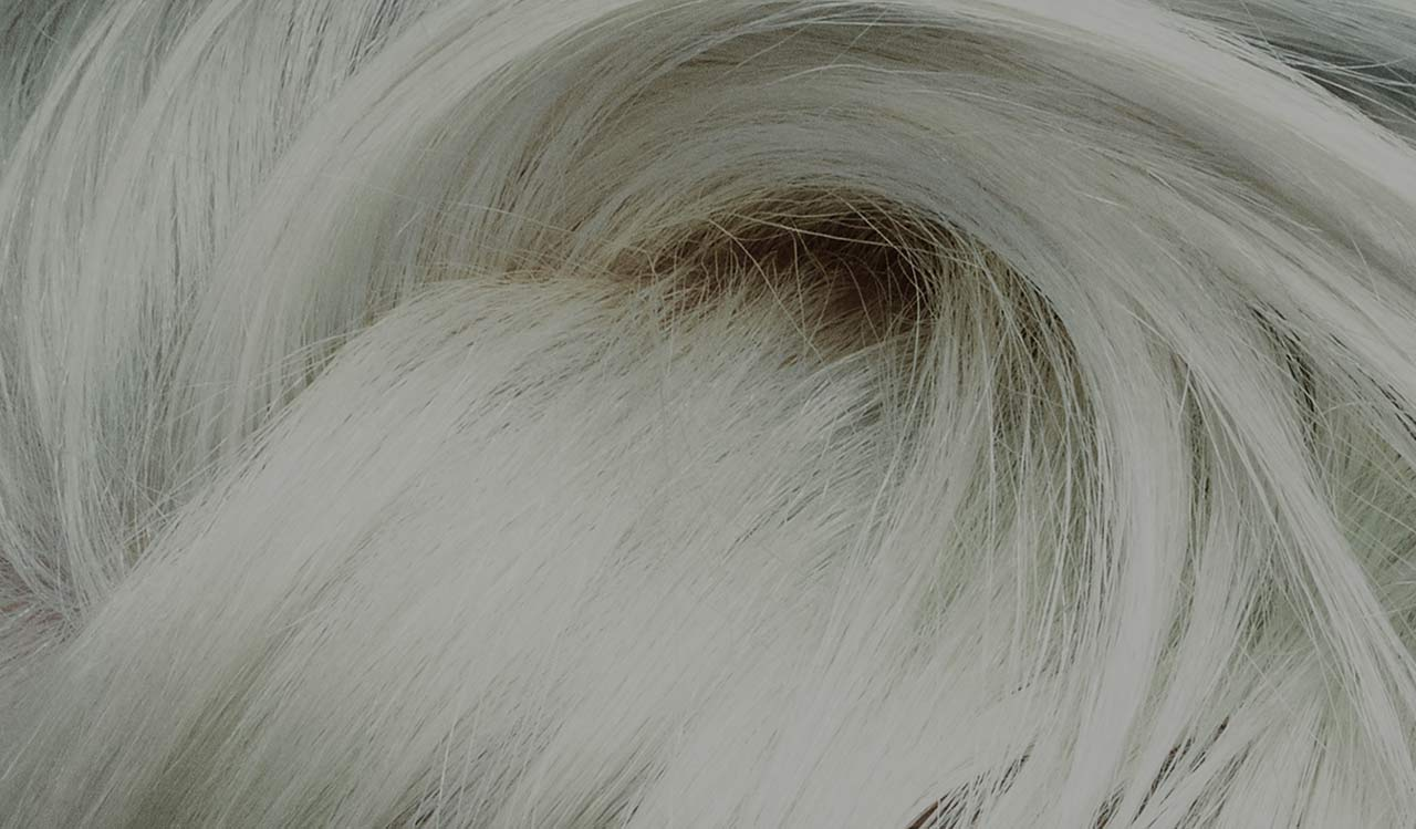 Hair design inspired by the latest fashion styles - Voila institute of hair design kitchener ...